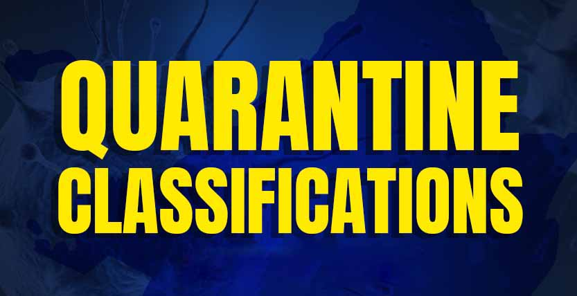 Quarantine Classifications in PH: August 1-15, 2020
